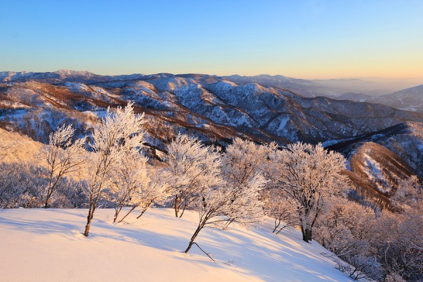 Nozawa Snow Report 07 March 2015 - Perfect Spring Weather