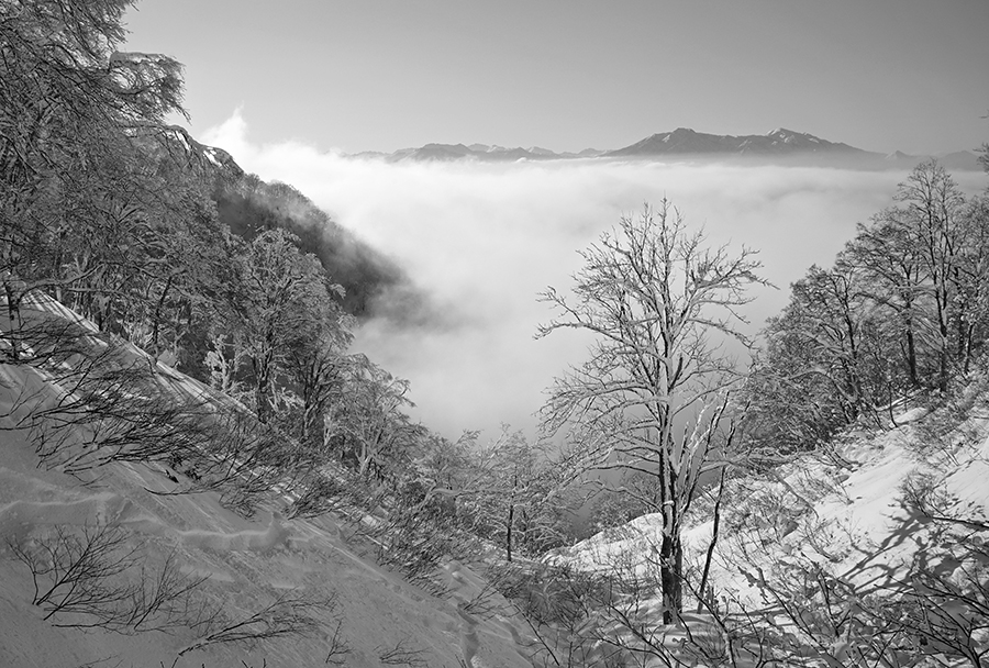 Fog engulfs the lower valleys surrounding Nozawa Onsen. Nozawa Onsen Snow Report: Light Snow across the Mountain