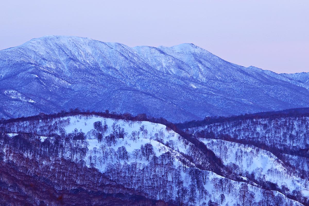 Nozawa Onsen Snow Report 26 January 2014