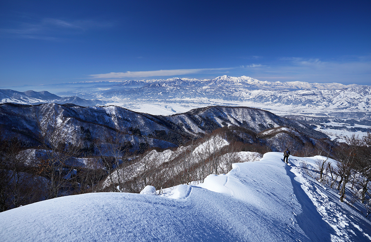Nozawa Onsen Snow Report 25 January 2014