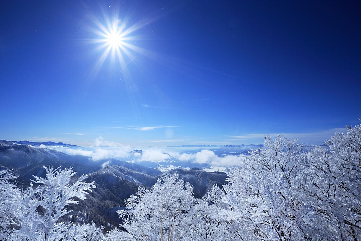 Nozawa Onsen Snow Report 28 January 2014: