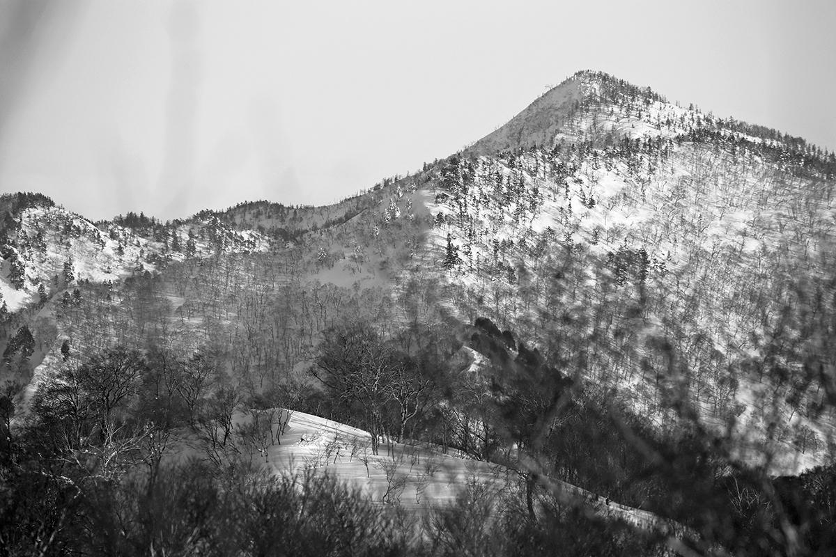 Nozawa Onsen Snow Report 2 February 2014