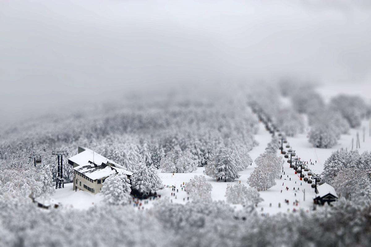 Miniature Nozawa.