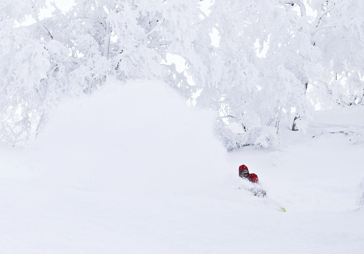 Nozawa Onsen Snow Report 12 February 2014