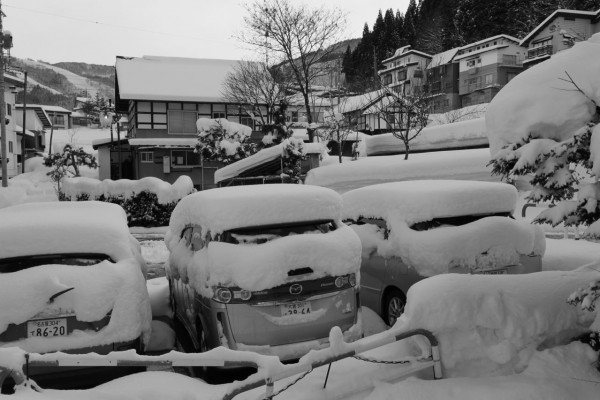 Nozawa Onsen Snow Report 02 March 2015 - 15cm of fresh powder