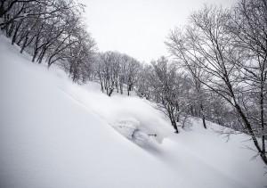Nozawa Snow Report: 13 February 2015 - Powder Approaching!