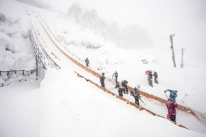 Nozawa Snow Report 19 February 2015 - Fresh Snow Falling