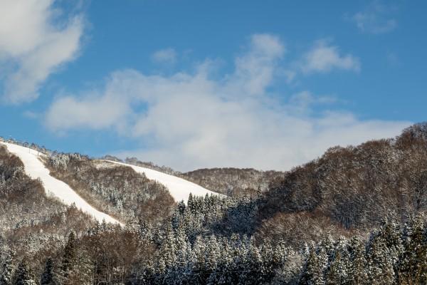 Nozawa Onsen Snow Report 28 December 2015