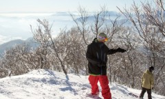 Nozawa Onsen Snow Report 13 February 2016