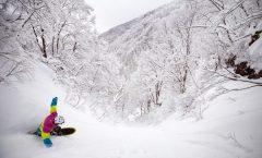 Nozawa Snow Report 12 January 2017