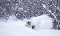 Nozawa Snow Report 17 January 2017