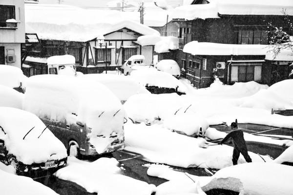 Nozawa Snow Report 23 January 2017