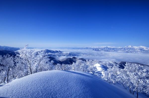 Nozawa Snow Report 20 January 2017