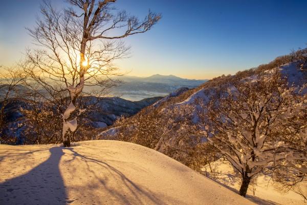 Nozawa Snow Report 27 January 2017