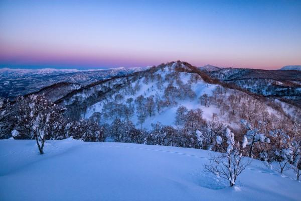 Nozawa Snow Report 1 February 2017