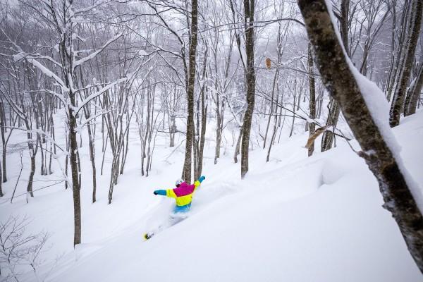 Nozawa Snow Report 6 January 2017