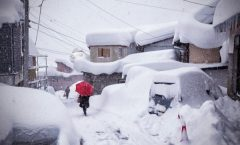Nozawa Snow Report 21 February 2017