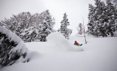 Nozawa Snow Report 22 February 2017