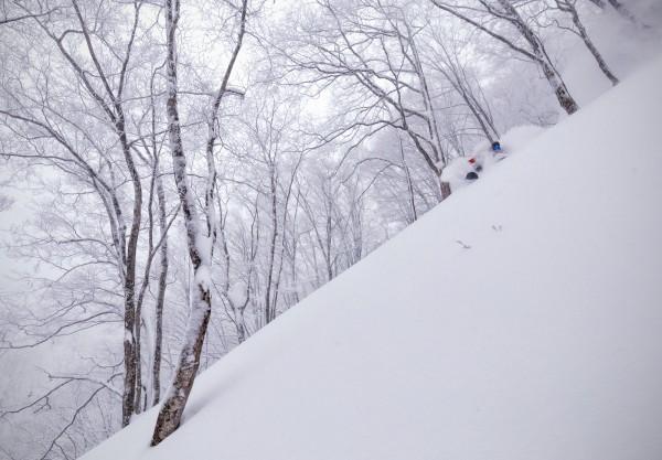 Nozawa Snow Report 4 February 2017