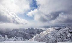 Nozawa Snow Report 20 February 2017