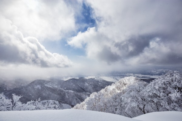 Nozawa Snow Report 20 February 2017