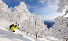 Nozawa Snow Report 17 February 2017