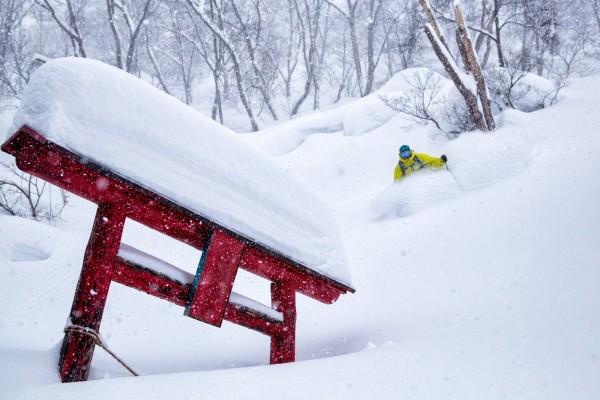 Nozawa Snow Report 19 February 2017