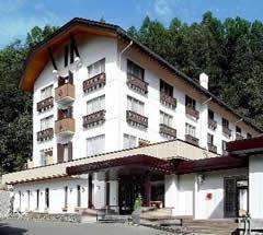nozawa-grand-hotel.en-gb