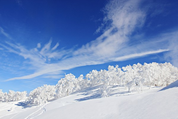 Snowy field near Nozawa summit.