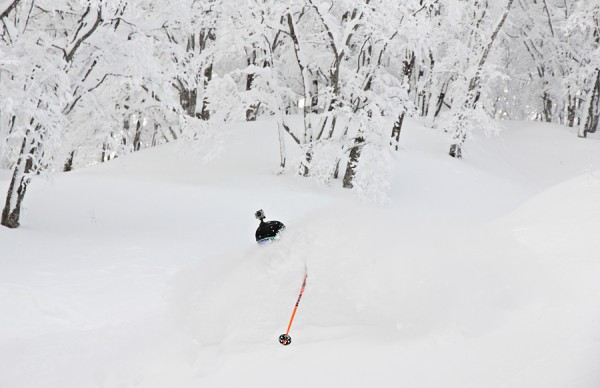 Nozawa Onsen Snow Report 9 February 2014 (AM): Still delivering the goods