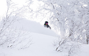 Nozawa Snow Report 12 March 2015, Unbelievable March Conditions