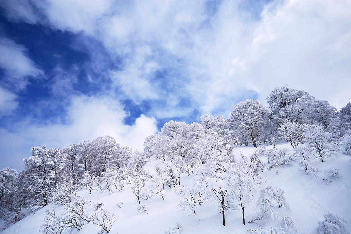 Sunny Nozawa Onsen landscape yesterday.