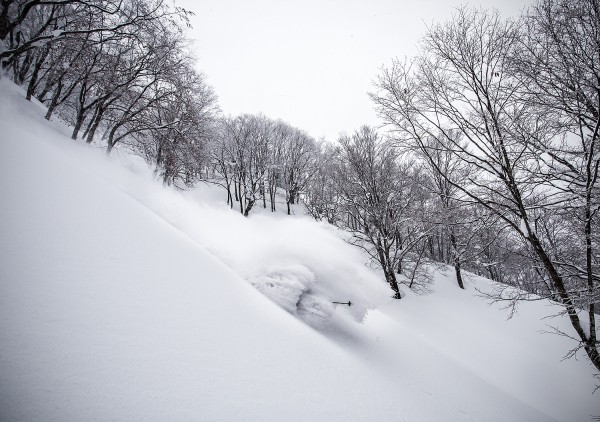 Nozawa Snow Report: 13 February 2015 - Powder Approaching!