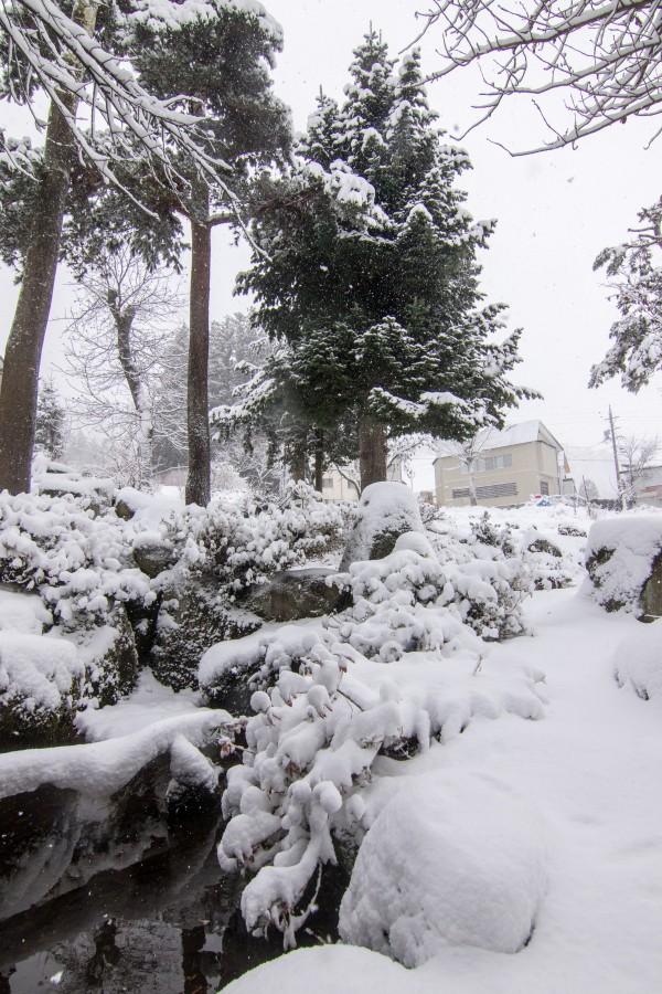 Nozawa Onsen Snow Report 27 December 2015: Heavy snowfalls – now that's more like the Nozawa we know!