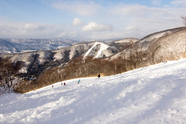 Nowawa Onsen Snow Report 2 January 2016: New Year's Day on the Slopes at Nozawa.