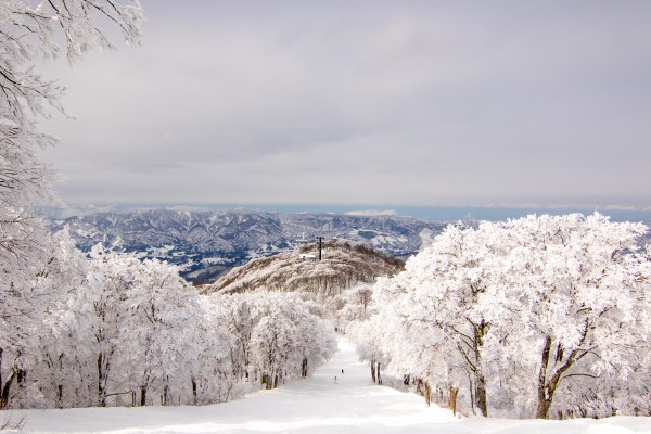Nozawa Onsen Snow Report 28 January 2016