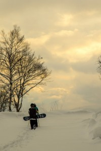 Nozawa Onsen Snow Report 25 February 2016