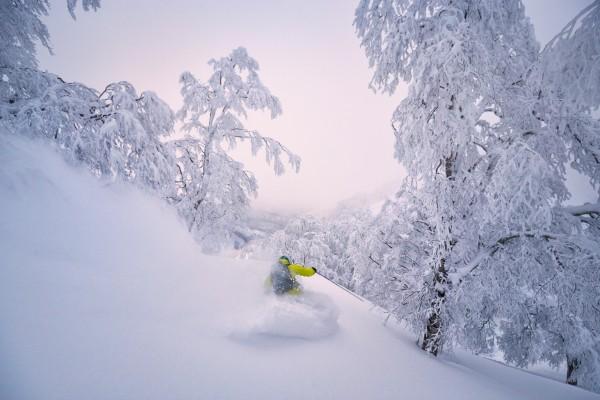 Nozawa Snow Report 9 February 2017