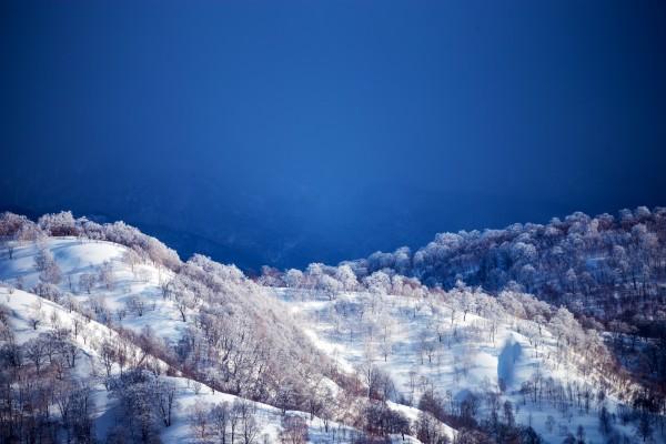 Nozawa Snow Report 9 March 2017