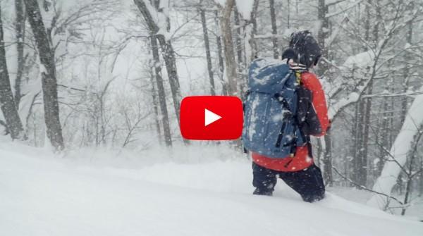 Nozawa Snow Report Wednesday 31st of January 2018