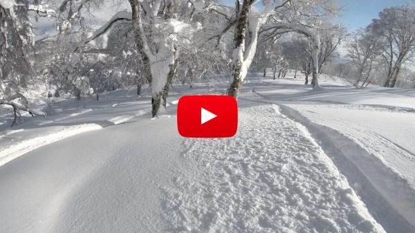 Nozawa Snow Report Wednesday 7th of February 2018