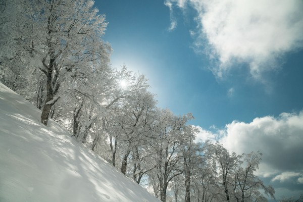 Nozawa Snow Report Saturday 3rd of March 2018